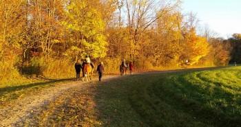 Students at Fieldstone Farm.